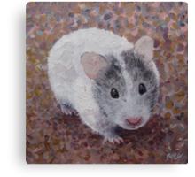 Jasmine My Hamster Canvas Print