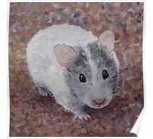 Jasmine My Hamster Poster