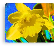 Daffodil Abstract Canvas Print