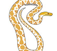 Albino Reticulated Python Art  by CustomExotics