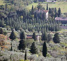 Tuscan Farmland by phil decocco