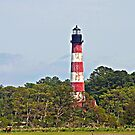 Assateague Lighthouse by Monnie Ryan