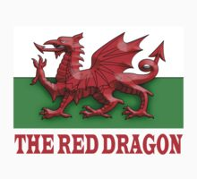 WALES, RED DRAGON OF WALES, WELSH FLAG Kids Clothes