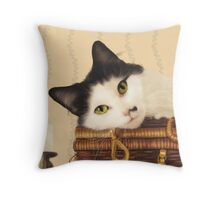Cat on a picnic basket Throw Pillow