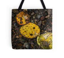 Dried Cactus Tote Bag