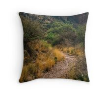 The Window Trail Throw Pillow