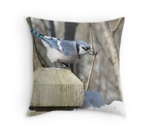 Bluejay on post Throw Pillow