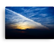 With a bold brush... Canvas Print