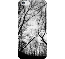 Winter Day iPhone Case/Skin