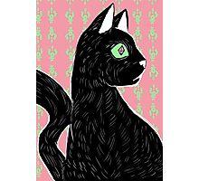 Black Cat Photographic Print