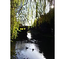 Beneath the Willow ~ Grand Union Canal, Hertfordshire 2009 Photographic Print