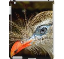 Portrait of the Blue Eyed Red-legged Seriema Bird iPad Case/Skin