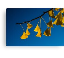 Dance in the Fall Canvas Print