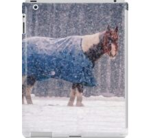 Equine Snowstorm Two iPad Case/Skin