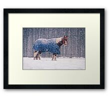 Equine Snowstorm Two Framed Print