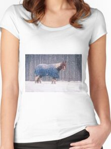 Equine Snowstorm Two Women's Fitted Scoop T-Shirt