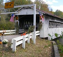 Root Road Covered Bridge by Monnie Ryan