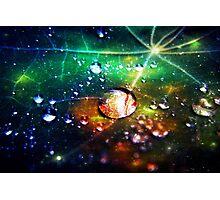Disco dew Photographic Print