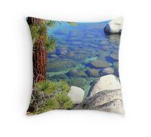 """""""Lake Bottom Colors"""" Throw Pillow"""