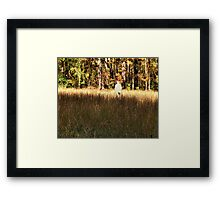 """Contemplation""... prints and products  Framed Print"