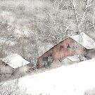 Snow Bound by billium