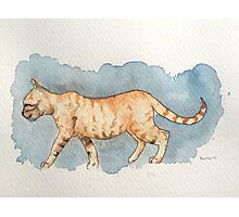 Water Color Cat Photographic Print