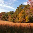 """""""A Peaceful Fall Day in Georgia""""... prints and products by © Bob Hall"""