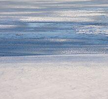 Steel Blue Ice by reindeer