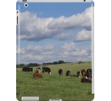 It's a great day iPad Case/Skin