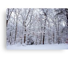 Winter's Forest Canvas Print