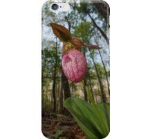 Ladyslipper, George Washington National Forest, Virginia iPhone Case/Skin