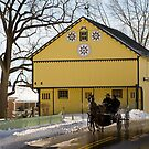 Bright Yellow Barn by Mark Van Scyoc