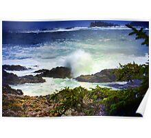 """Pacific Rim National Park-British Columbia"" Poster"