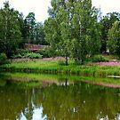 Estonia in his simplicity by loiteke