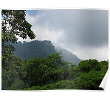 Henri Pittier National Park Poster