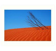 Desert,N.T. Art Print
