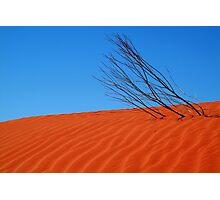 Desert,N.T. Photographic Print