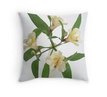 Peruvian Lily in vase Throw Pillow