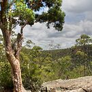 Martin's Lookout by Lorraine Creagh