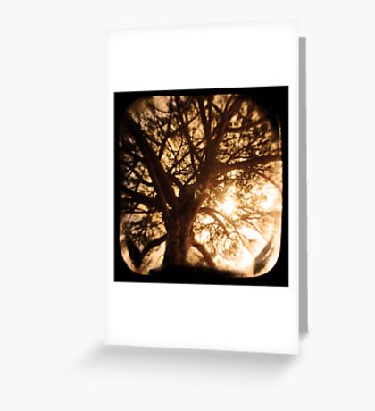 Happiness Lives Greeting Card