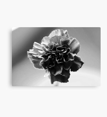 Black and White Centred Flower Canvas Print