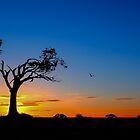Zip-A-Tree-Doo-Dah by Wrayzo
