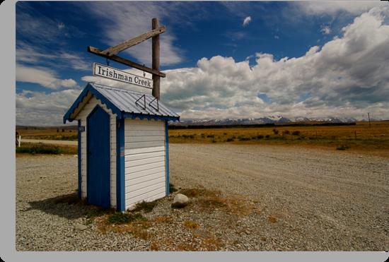 Wild New Zealand by Allan Johnston