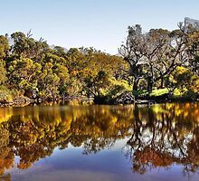 Amazing reflections in the Moore River by georgieboy98