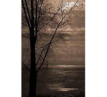 Winter Softly Photographic Print