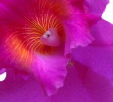 Purple Garden Sticker