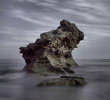 The Rock by Carmel Harty