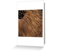 I Choose Chocolate Greeting Card