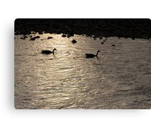 Nessy and co. Canvas Print