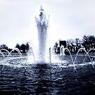 WW2 Memorial - Washington D.C by Michael  Bermingham